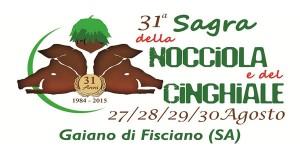 sagra-2015-gaiano-fisciano
